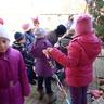 Áll a karácsonyfa a Közösségi Háznál !