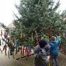 Karácsonyfa a Közösségi Háznál