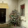 07 - A karácsonyfa az udvarra került, így legalább sokáig szép marad.jpg