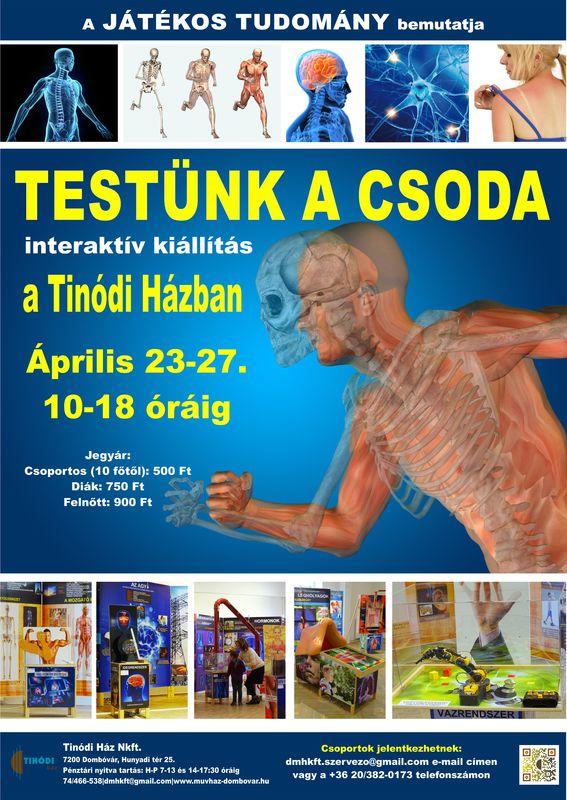 Testünk a csoda kiállítás plakát