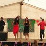 077. Kurdi roma táncosok műsora
